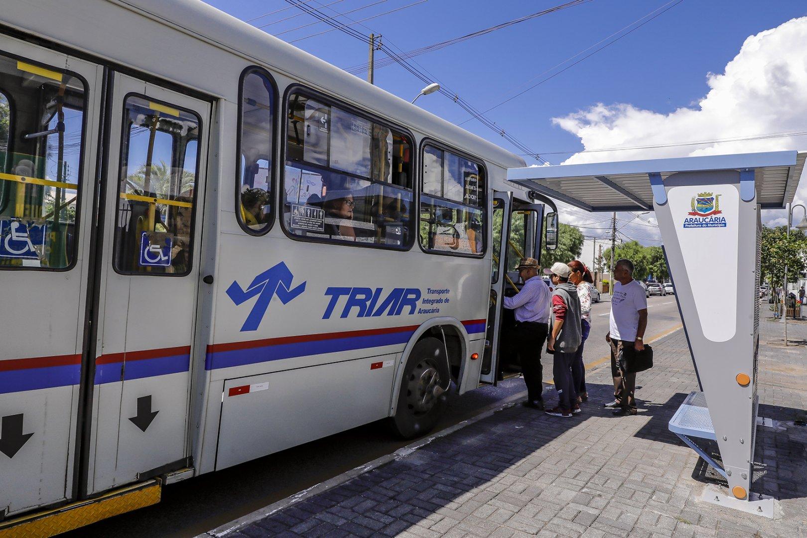 Ônibus Araucária Transporte coletivo