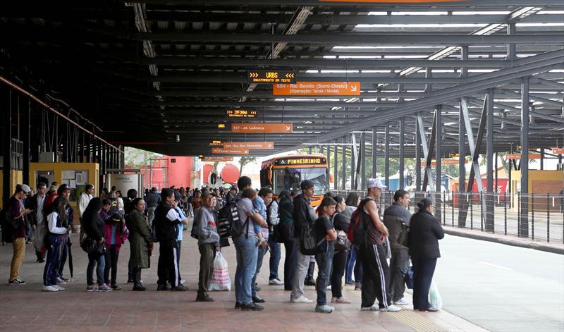 Linha Araucária Curitiba