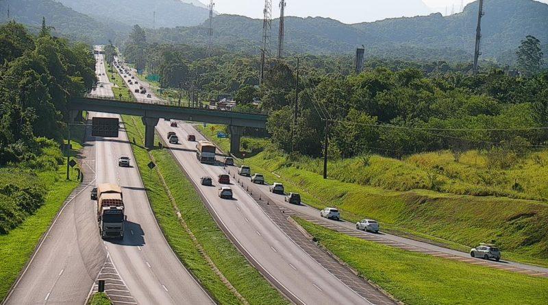 BR-277 Ecovia Movimento nas estradas